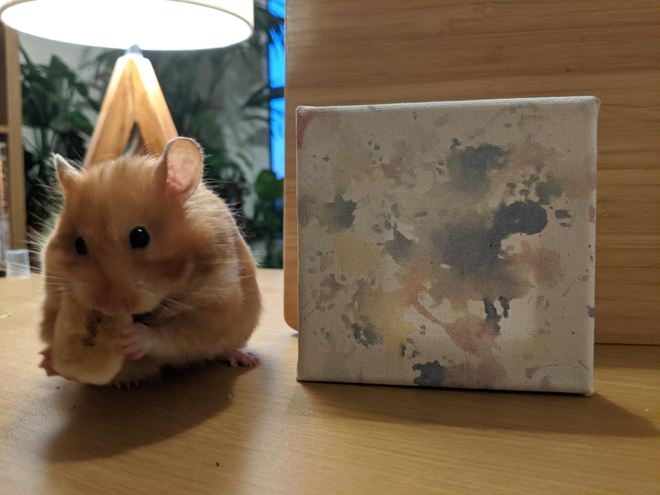 Hamster and their painting