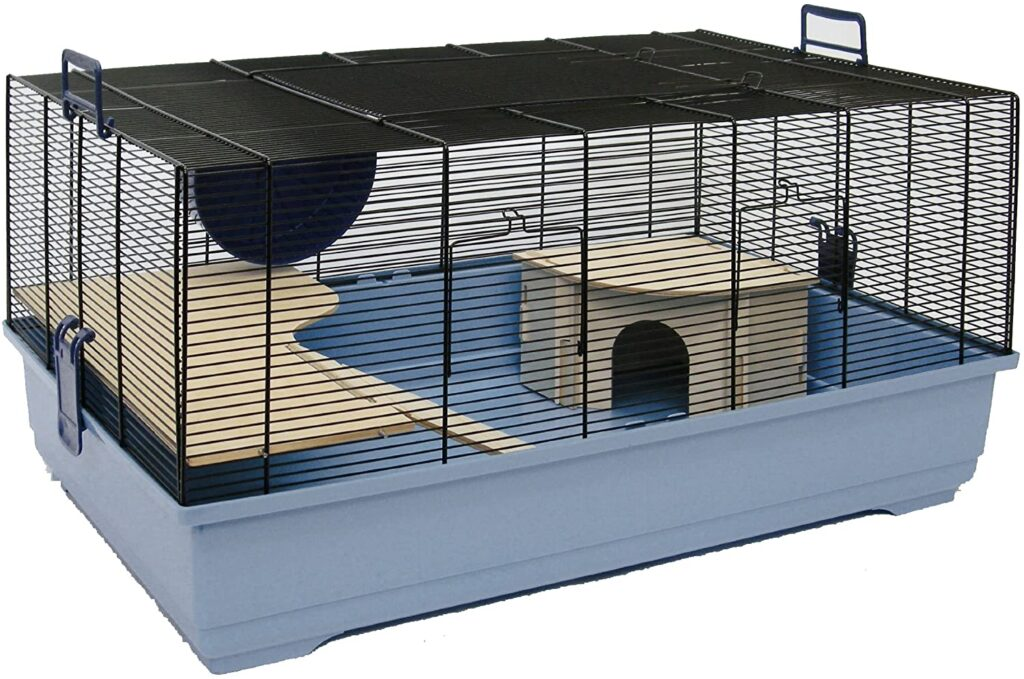 An empty Barney cage hamster.