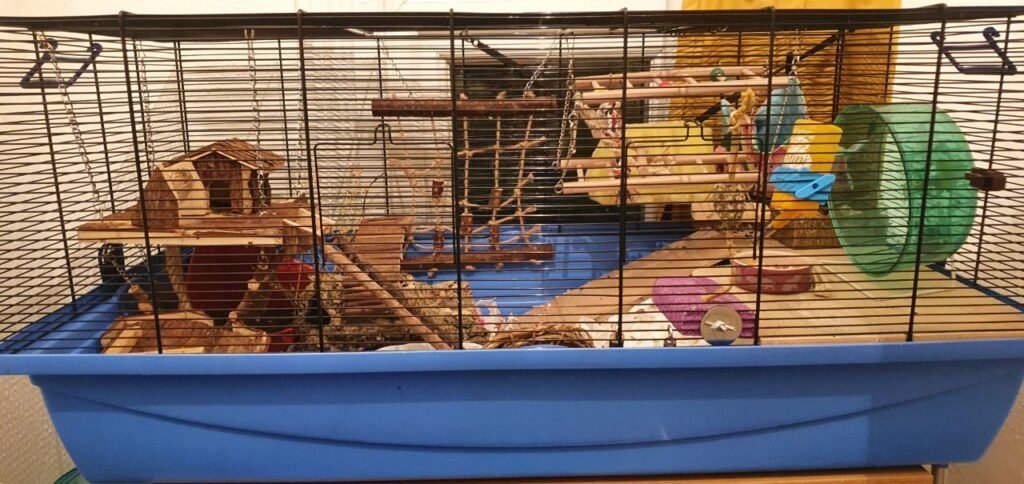A great example of the Barney cage!